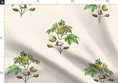Cotton-blossom_pods - Spoonflower Plant Rooms, Room With Plants, Cotton Blossom, Summer Garden, Creative Business, Custom Fabric, Spoonflower, Craft Projects, Quilts