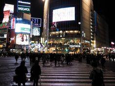 Top 5 Things To Do In Tokyo #tokyo #tokyomustdos #travel