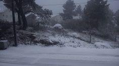 Casa das Fontinhas: Neve no Sabugueiro - Está a nevar agora!