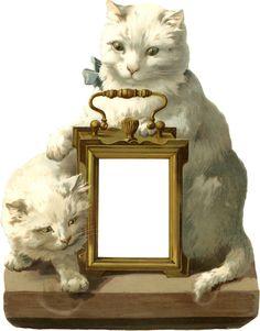 Vintage Cats Frame - Label ~ Zibi Vintage Scrap