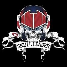 Image result for skull squadron