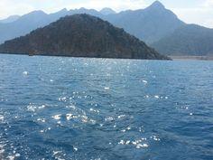 Deniz . Doğa
