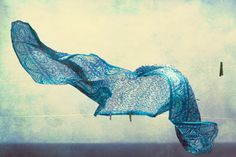 I LOVE how a scarf blowing in the wind can become a piece of ART when created through the eyes of a photographer <3 Bluebird, photography by Maria Frodl
