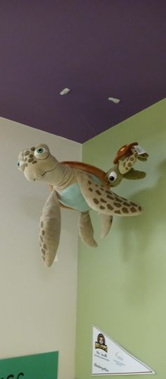 Turtle Time, Baby, Baby Humor, Infant, Babies, Babys