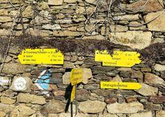 Wandern am Panoramaweg Rossatz   Wachau Inside Bart Simpson, Austria, Bike Rides, Hiking, Viajes, Tips