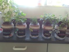 Made a herb garden from glass jars black board stickers twine lace tape and white pebbles so easy anyone can do it