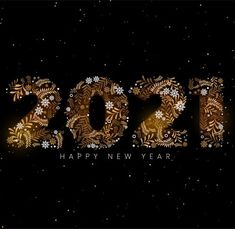 New year 2021 images Xmas decorative pictures free HD for families and friends. We will open the book. Its pages are blank. We are going to put words on them ourselves. The book is called opportunity and its first chapter is New Year's Day. #newyearimages2021 #newyearpictures2021 #newyearpics2021 New Year Images Hd, Happy New Year Pictures, Cool Pictures, Funny Pictures, Funny Happy, Xmas, Christmas, New Years Eve, Holiday