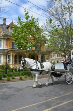 Cape May , Horse & Carriage