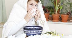Home Remedies for Allergic Rhinitis | | Health Digezt