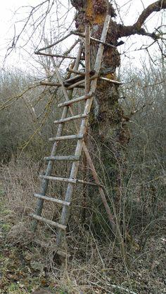 Siadanka 3 Tree Stand Hunting, Hunting Cabin, Archery Hunting, Bow Hunting, Hunting Dogs, Bushcraft Camping, Camping Survival, Deer Hunting Blinds, Deer Blinds