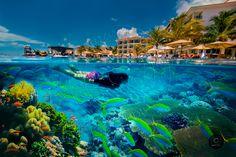 Servicio de Fotografía profesional en diferentes ramas, Fotografías con calidad total!!!  Cancún y todo México