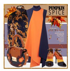"""""""Pumpkin and navy."""" by interesting-times ❤ liked on Polyvore featuring Victoria, Victoria Beckham, SALAR, Malone Souliers and pss"""