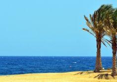 Compréhension orale et écrite du français, exercices en ligne niveau A1 Beach, Water, Outdoor, Exercises, Fishing Line, Gripe Water, Outdoors, Seaside, Outdoor Games