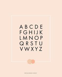 Futura PT Web Font, typography, graphic design, web fonts, fonts