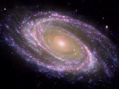 Galaxia Messier 81