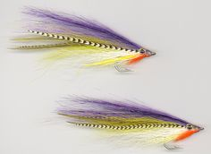 Bait Fish Fly Patterns