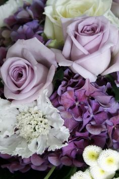Sterling (lavender) roses, white roses, purple hydrangea and other white flowers for a pleasant mix of shades purples Purple And White Flowers, Colorful Roses, My Flower, Pretty Flowers, Purple Hydrangeas, Lavender Flowers, Dusty Purple, Light Purple, White Roses