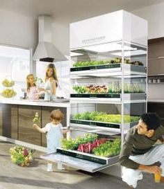Okay this is kind of neat. It's a hydroponic kitchen garden. I can see an idyllic future wherein everyone has one of these in their kitchen. This picture already looks like a kitchen on Earth in Star Trek.