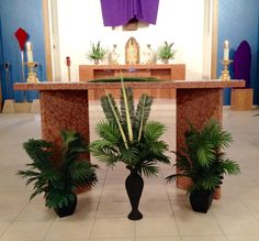 catholic church decorating for pentecost Altar Decorations, Easter Flowers, Church Flowers, Church Banners, Palm Sunday, Church Design, Episcopal Church, Holy Week, Floral Arrangements