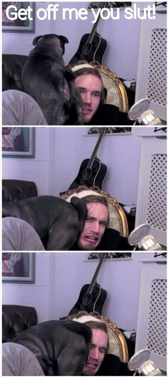 :-3 pewdiepie I love his pugs. PUGA