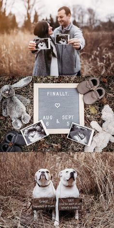 Indianapolis Newborn and Family Photographer Pregnancy Announcement Photography, Pregnancy Announcement Pictures, Cute Baby Announcements, Pregnancy Photos, Baby Announcement With Dogs, Cute Pregnancy Pictures, Rainbow Baby Announcement, Big Sister Announcement, Grandparent Pregnancy Announcement