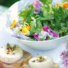 Dufte die Kräuter kommen 2014 Kräuter-Blüten-Salat mit Ziegenkäse und Holundervinaigrette www.spreewald-kraeutermanufaktur.de