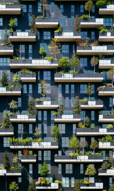 Week Bosco Verticale by Stefano Boeri. Sometimes Architecture can propose a new sustainability building like this example. This vertical garden apartment give some advantageous to the people by the vertical way. A As Architecture, Sustainable Architecture, Contemporary Architecture, Contemporary Stairs, Contemporary Building, Contemporary Cottage, Contemporary Apartment, Contemporary Wallpaper, Contemporary Office