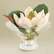 Floating Magnolia Blossom