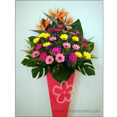 Congratulatory Stand - E-Tree Home Florist & Plant Rental