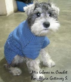 My work in Crochet: Step by step sweater pet. Pet Sweaters, Small Dog Sweaters, Crochet Dog Sweater, Crochet Pet, Dog Blanket, Dog Items, Dog Dresses, Dog Coats, Pet Clothes
