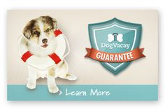 """Dog Boarding options in your neighboorhood! - """"DogVacay allows you to find a real home to board your dog. It's better than a kennel where Spot will be stuck in a cage all day. Home boarding gives your dog individual attention, fun with a small number of well-socialized dogs, and supervision from a responsible pet owner - at a price that doesn't add up to more than your vacation."""""""