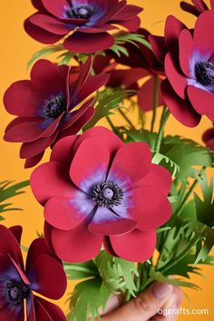Learn how to make this gorgeous paper Anemone Bordeaux flowers. Watch my video tutorial and download SVG / PDF templates to learn how you can make it! How To Make Paper Flowers, Paper Flowers Wedding, Paper Flowers Diy, Diy Paper, Paper Bouquet Diy, Flower Video, Anemone Flower, Paper Flower Tutorial, Flower Template