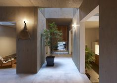 House-in-Kokubunji-by-Suppose-Design-Office