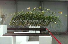 Florale Dynamik by Thomas Groehbuehl Floral Design, Herbs, Plants, Floral Patterns, Herb, Flora, Plant, Spice