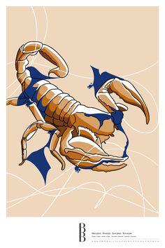 Sternzeichen Skorpion / Zodiac sign Scorpio Sonic The Hedgehog, Illustration, Animals, Fictional Characters, Art, Astrology, Stars, Art Background, Animales