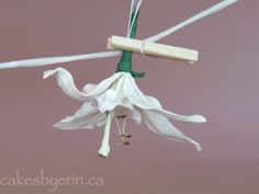 A gumpaste lily tutorial reviewCakes by Erin