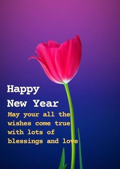 New year wishes and quotes , happy new year 2021, new year messages , happy new year greetings. Lovers Friends wishes for new year. Happy New Year 2021 NABHA NATESH PHOTO GALLERY  | IMAGES.NEWS18.COM  #EDUCRATSWEB 2020-09-20 images.news18.com https://images.news18.com/telugu/uploads/2019/11/Nabha-natesh-latest-dd-3.jpg