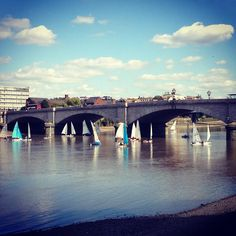 Not something you see everyday. A view of the lovely almost Parisian Putney Bridge with a large sailing school. Loads of boats!  #thames #thamespath #thameswalk #thamesriver #river #riverside #riverview #riverwalk #putney #putneybridge #putneyembankment #london #lovelondon #lovelondonlife #sailing #sailingboat #sailingstagram #sailinglife #boat #boats #boatlife #boating #timeoutlondon #thisislondon #prettycitylondon