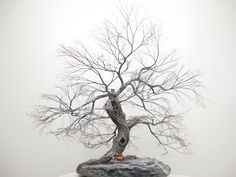Copper wire tree - Bonsai or Penjing style - Recycled material - Natural rock - Wabi Sabi - Moyogi - Informal upright