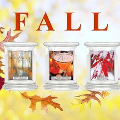 Fall...in Love TONIGHT! Happy September! Enjoy these Fall favorites! #AutumnRain #BrandiedPumpkin #FirstSnow #KringleCandle #FallInLove