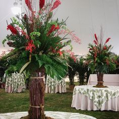 #c2mdesigns #floral #floraldesign #centerpiece #arrangement #big #tropicals #monstera #orchids #jamesstorie #ginger #bellsofireland #sagopalm #aspidistra #safarisunset #bamboo #birch #event #eventdecor #corporateevent #boston #MIT #tent #designsthatrock #likeC2MdesignsFacebook Designer: #christinemccaffery