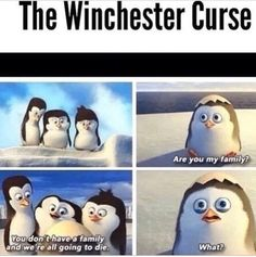 BUT SERIOUSLY THO XD<<SO DEPRESSINGLY HILARIOUSLY SAD<< is that adam?<< yes that's Adam. And that's Sam, Dean, and Castiel. :3