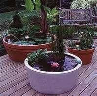 container watergarden
