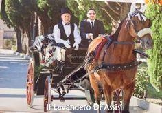 con carrozza Itinerari Assisi e dintorni