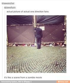 Creepy as hell one direction fans.