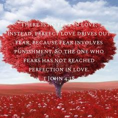 1 John There is no fear in love; instead, perfect love drives out fear, because fear involves punishment. So the one who fears has not reached perfection in love. Scripture Memorization, Scripture Verses, Bible Scriptures, God Jesus, Jesus Christ, Bubble Quotes, Powerful Scriptures, John 4, Bible Verses