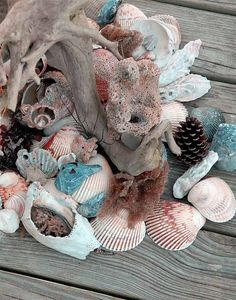 A Regular Day's Haul or what shells really look like at the beach.  Beautiful aren't they!