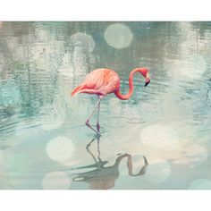 famous paintings periwinkle coral mint aqua teal - Google Search