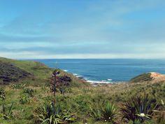 """Breathtaking View"" (Hokianga, New Zealand) Marc O Polo, New Zealand, Sunset, Water, Travel, Outdoor, Beautiful, Mount Olympus, Sunsets"