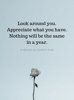 Look around you. Appreciate what you have. Nothing will be the same in a year   Gratitude Quotes - Q